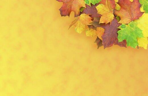 Ienesiet rudens krāšņumu savās mājās