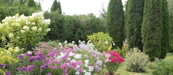 Baudīt dārzu, nevis kalpot tam – paraugdaiļdārzs Lubes pagastā