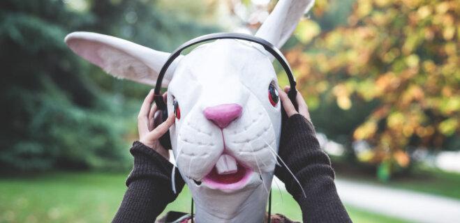 """""""Зайцев.нет"""" навсегда! Латвийцы назвали свои любимые сайты с музыкой"""