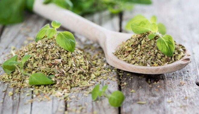 Волшебная трава: что такое орегано, куда его кладут и зачем это делают