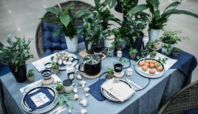 ФОТО: 8 советов по декорированию пасхального стола