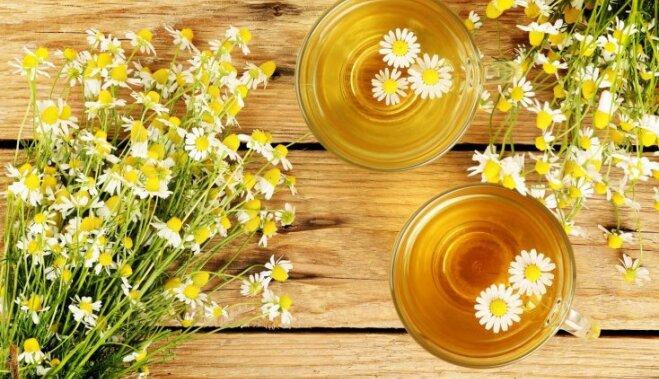какие чаи для похудения самые эффективные название