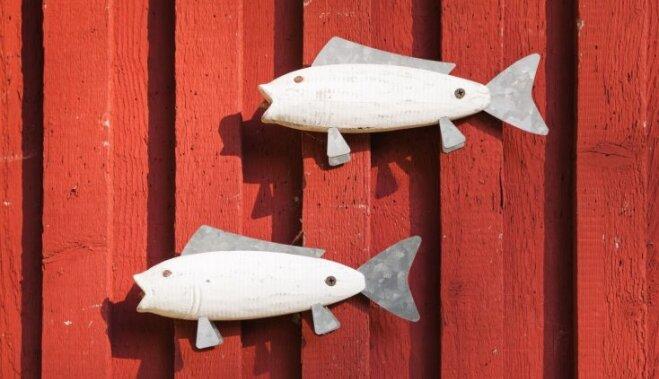 Zivtiņas interjerā – idejas, kā izdekorēt telpu