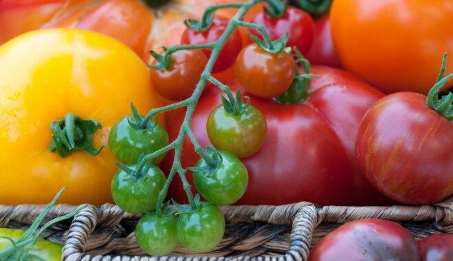 Советы бывалого: Дрожжи, как удобрение для растений
