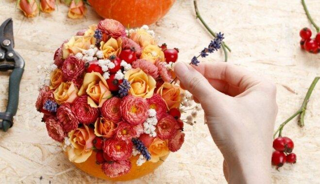 Foto pamācība: Eleganta rudens ziedu kompozīcija ķirbī