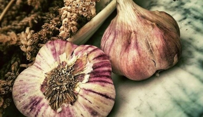 Veselīgi pašmāju produkti rudens vīrusu atvairīšanai