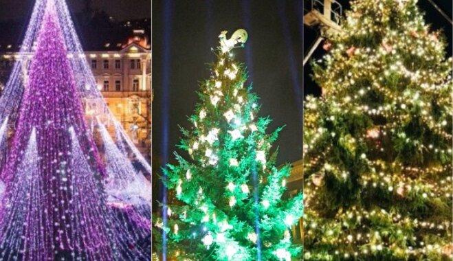 Kur krāšņāka – Tallinā, Viļņā vai Rīgā: nobalso par skaistāko eglīti