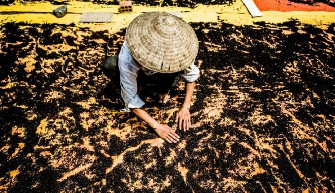 Maģiski drona foto: Garšvielu karaļa žāvēšana Fukuokā