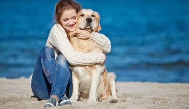 Glaudīšana, apskaušana, vainas apziņa – kāpēc sunim šīs darbības varētu nepatikt