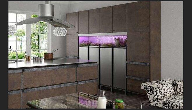Kā izvēlēties efektīvu un stilīgu tvaika nosūcēju virtuvei