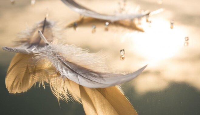 Bēbītis pārvērtās par eņģelīti un aizlidoja debesīs: Daces stāsts par dēliņa zaudējumu