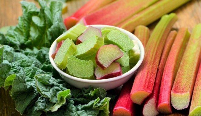 Vitamīniem bagātais rabarbers: kas tajā labs un kam no tā ēšanas izvairīties