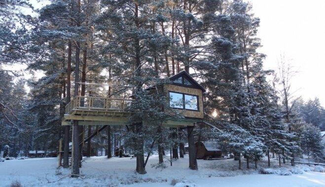 Cēsu pusē tapusi fantastiska koka māja piecus metrus virs zemes