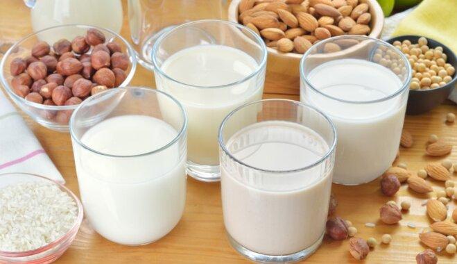 'Skolas pienu' varēs saņemt arī bērni ar laktozes nepanesību