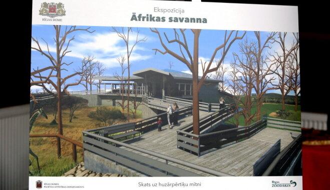 Rīga zoodārzā pabeigta ekspozīcijas 'Āfrikas savanna' būvniecība