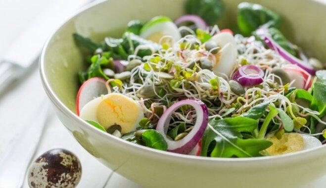 Салат с редисом, перепелиными яйцами и ростками гороха
