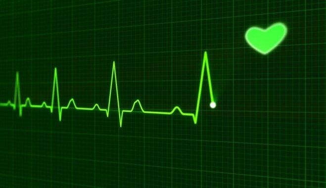 Sirds ritma ieraksts – jebkurā laikā un vietā