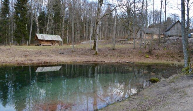 Tirkīzzils ūdens un vairāki avoti vienuviet – apburošais Mežmuižas dabas liegums