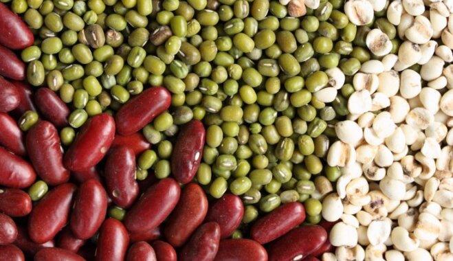 Как правильно поститься или Пять растительных источника белка