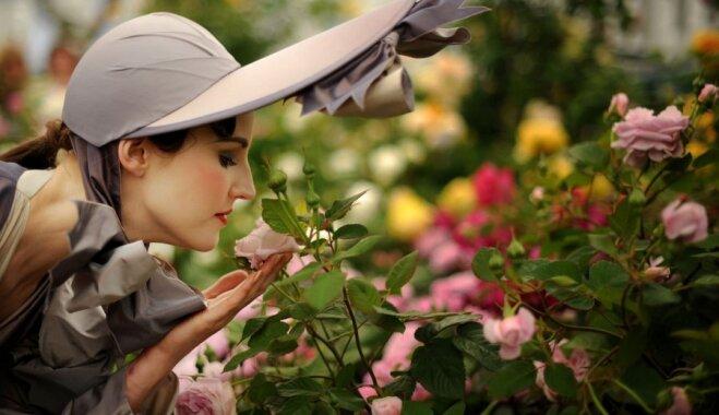 Aicina uz rožu ziedēšanai veltītu ekskursiju LU Botāniskajā dārzā