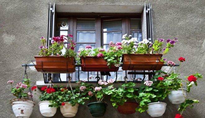No saimniecības telpas līdz zvilnēšanai – ko drīkst un nedrīkst darīt uz balkona