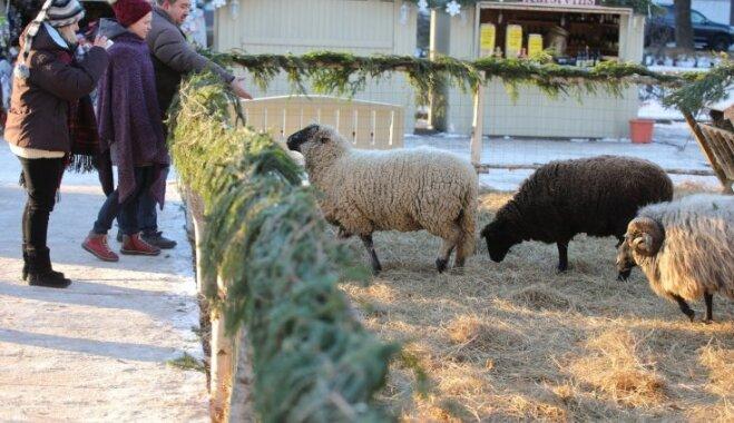 12 Ziemassvētku tirdziņi Rīgā, kuros atrast skaistas un gardas dāvanas mīļajiem