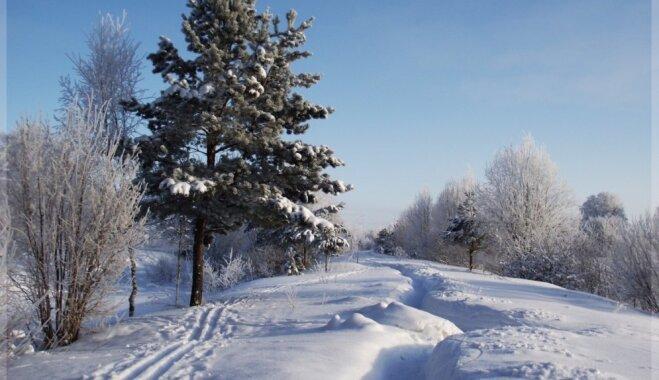 Aicina doties ziemīgā pārgājienā gar Igaunijas robežu