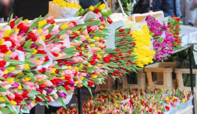 Ziedi, gardumi un priekšnesumi: Centrāltirgū 8. martā notiks īpašas lustes