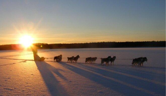 В Эстонию на выходные: лучшие зимние развлечения наших северных соседей