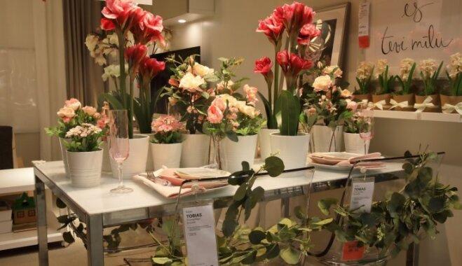 Foto: No Ziedoņa līdz jūrai – pieci galda klājumi Latvijas simtgades svinēšanai
