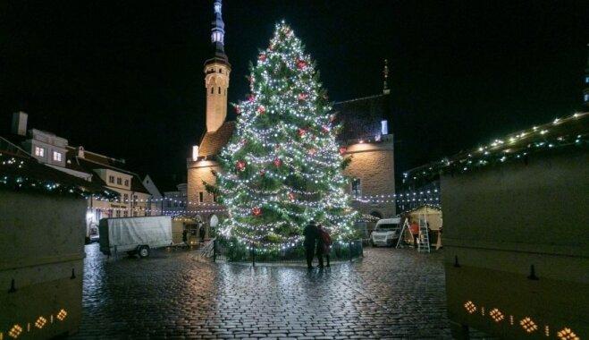 Foto: Tallinas kuplā Ziemassvētku eglīte greznojas svētku rotā