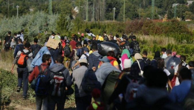 Задержана крупнейшая группа нелегальных мигрантов — 29 иракцев