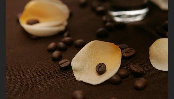 Kafijas biezumi kompostā - kaitīgi vai noderīgi augsnei?