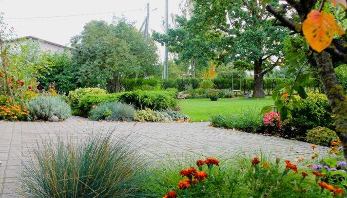 Smukuma deva no Tukuma: četri stāsti par skaistākajiem pilsētas dārziem