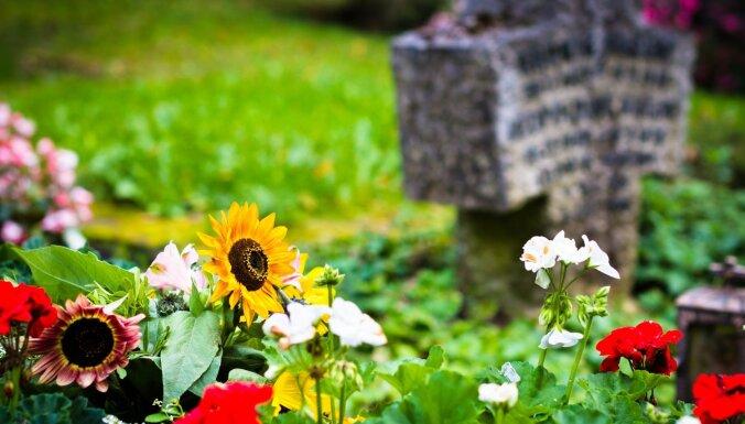 Kapu kultūra: svarīgākais par apstādījumiem un augu izvēli