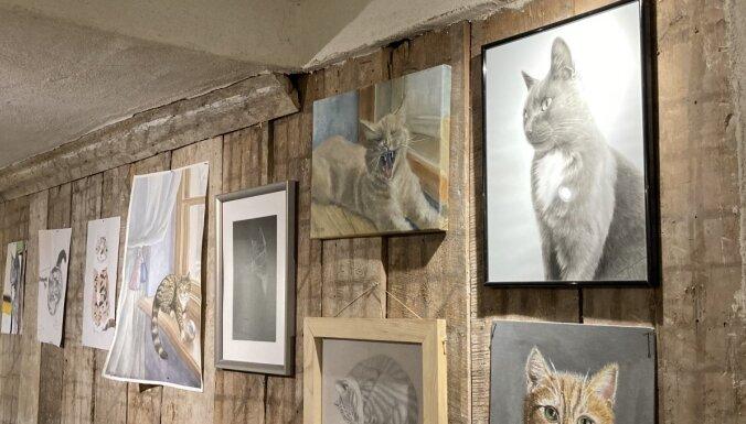 ФОТО. Поместье Абгунсте – котики, художники и романтика в одном месте