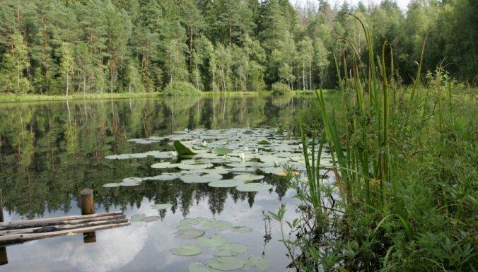 В Латгалии с необитаемого острова на озере спасен мужчина