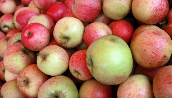Skolēniem arī šajā mācību gadā dos bezmaksas augļus un dārzeņus
