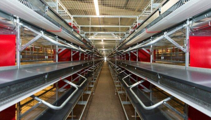 Alūksnes putnu fermas modernizācijā ieguldīti 15 miljoni eiro