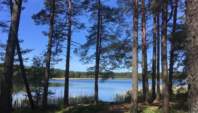 Reta ūdensauga pasargāšanai Ummja ezerā peldēties drīkstēs tikai vasaras beigās