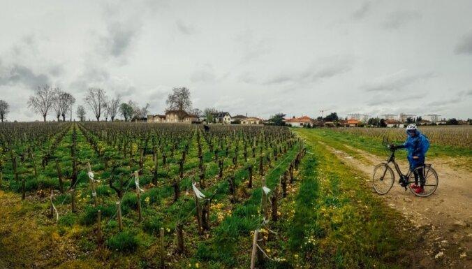 Vīna upes siera krastos – atspirdzinošs ceļojums pa Bordo reģionu
