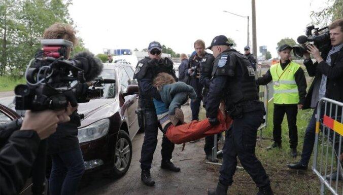 В Таллине защитники деревьев протестовали против спиливания ивы