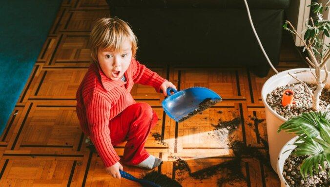 Kā iemācīt bērnam sakārtot rotaļlietas un pildīt pienākumus mājās