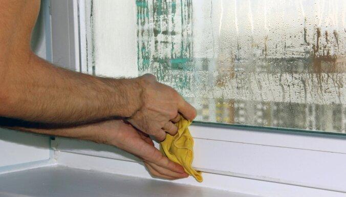 Конденсат на окнах, образуется плесень? Советы по избавлению от черезмерной влаги
