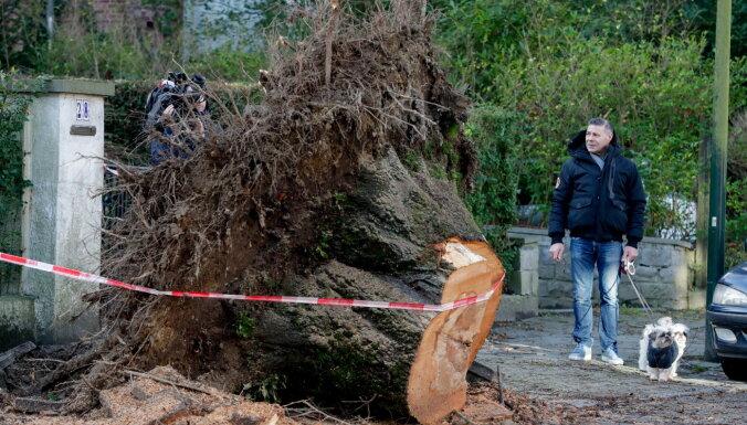 """ФОТО, ВИДЕО: Последствия урагана """"Киара"""" глазами европейцев"""