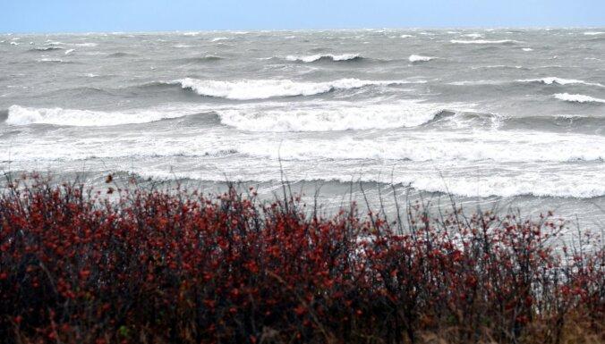 Синоптики обещают выходные с сильным ветром, дождями и мокрым снегом