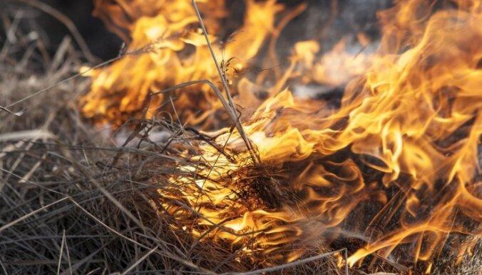 В пятницу в Латвии тушили 30 пожаров прошлогодней травы