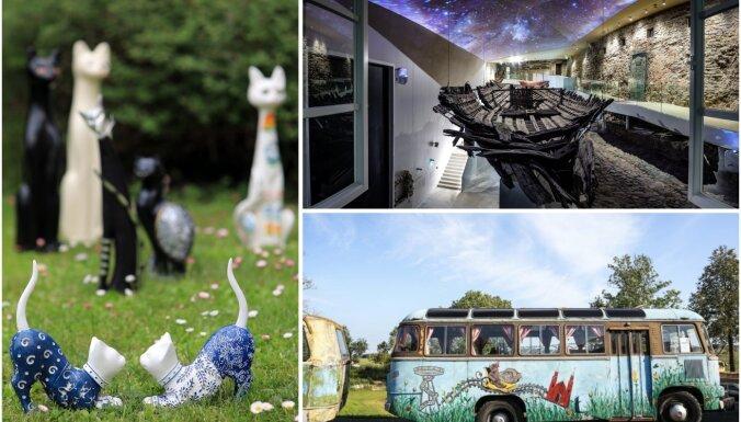 Nenovērtēto mantu, kaķu un jūras pasaules: neparasti muzeji un izziņas punkti Baltijā