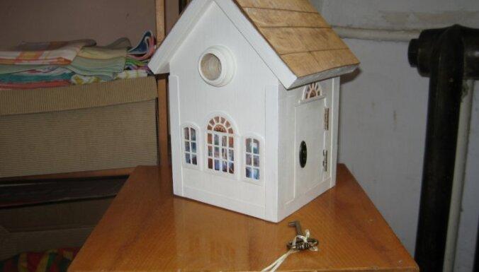 Lasītājs darina: Grezns un praktisks nams putnam