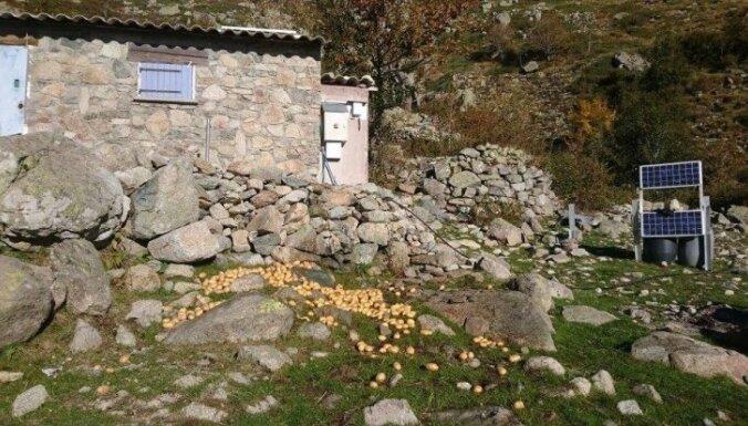 Kājām pāri Korsikai: latvietes piedzīvojumi Eiropas grūtākajā pārgājienā